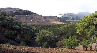 Süreyya Tabiat Parkı