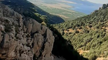Isparta Kapıderesi Toros Sediri - 3 Tabiat Anıtı
