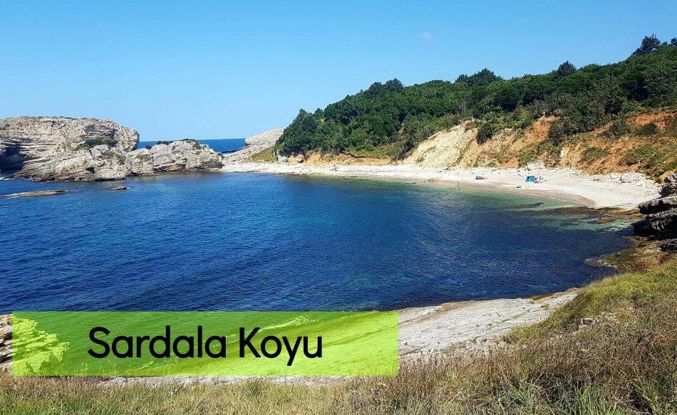 Sardala Koyu