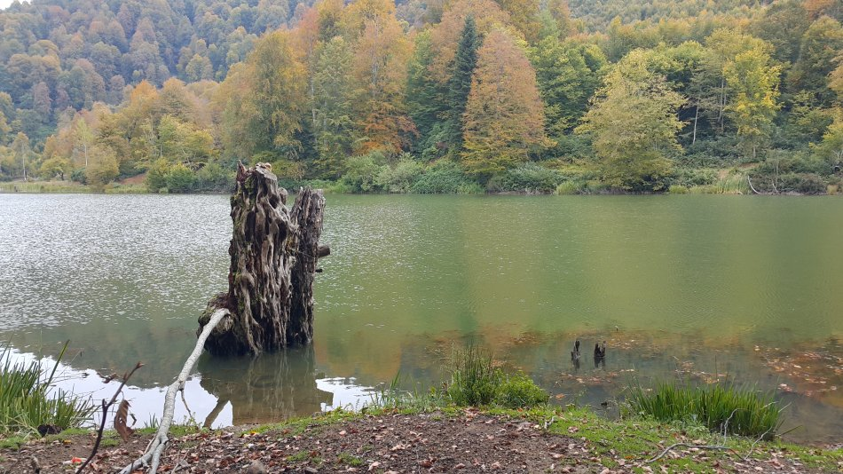 Türkiye'nin Milli Parklarının Listesi